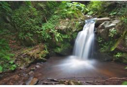 Еднодневна екскурзия до Пехчевски водопад, Струмица и Дойранско езеро