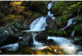 Еднодневна екскурзия до Бистришкия водопад, Кюстендил и Кадин мост