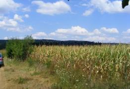 Парцел  в село Садина