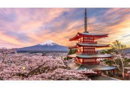 Курс по Японски език в Интер Алианс