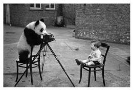 Курс по Фотография в Интер Алианс