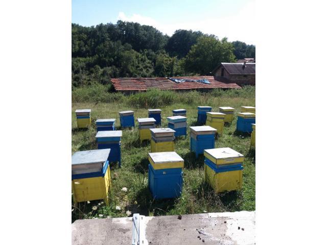 Продавам пчелни кошери