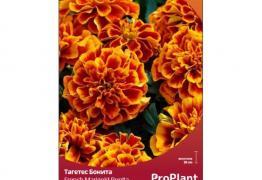 Тагетес Бонита, ProPlant, 0.5 гр