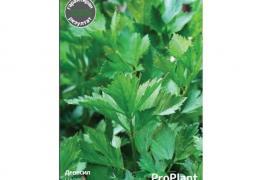 Девесил, ProPlant, 1 гр.