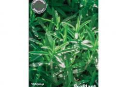 Чубрица, ProPlant, 2 гр