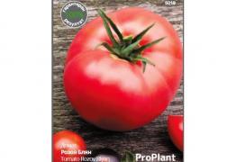 Домат Розов Блян, ProPlant, 0.3 гр