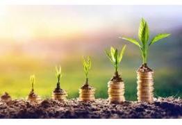 Търсите бизнес проекти за инвестиция.